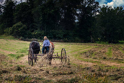 Hay Photograph - Amish Farming by Tom Mc Nemar