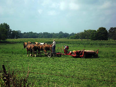 Photograph - Amish Field Work by Joyce  Wasser