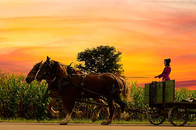 Almost Home Photograph - Amish Girl Handling The Team Sundown by Randall Branham