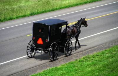 Amish Horse And Buggy In Ohio Art Print by Dan Sproul