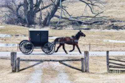 Amish Photograph - Amish Horse And Buggy Lighting Effects by David Arment