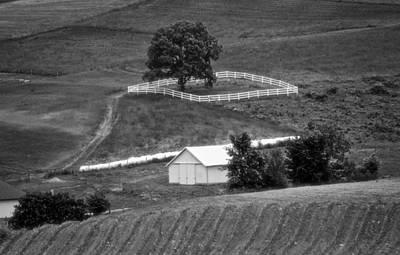 Amish Land Art Print