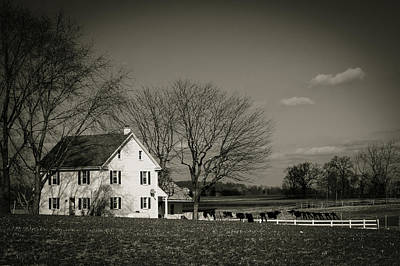 Photograph - Amish Monotones by Dave Hall