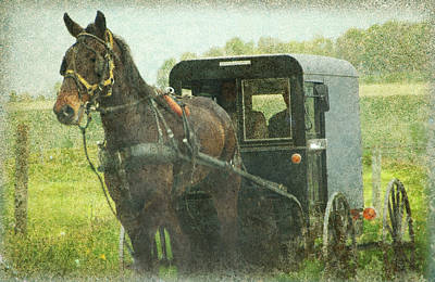 Photograph - Amish Of Lancaster County  by Dyle   Warren