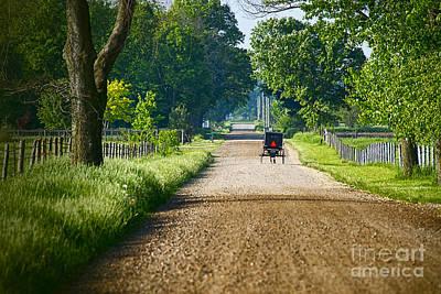 Amish Photograph - Amish Road May 2014 by David Arment