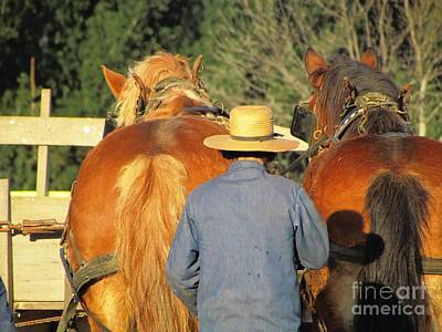Amish Team Art Print