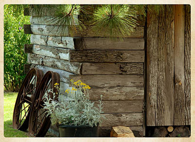 Amish Wood Shed Art Print by Lena Wilhite