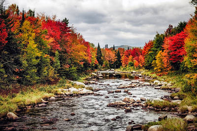 Photograph - Ammonoosuc Autumn by Robert Clifford