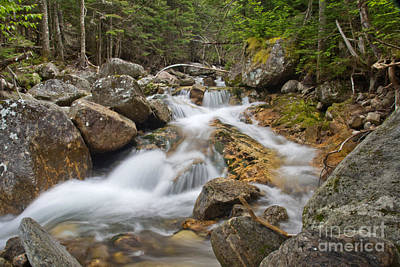 Photograph - Ammonoosuc River by Jemmy Archer