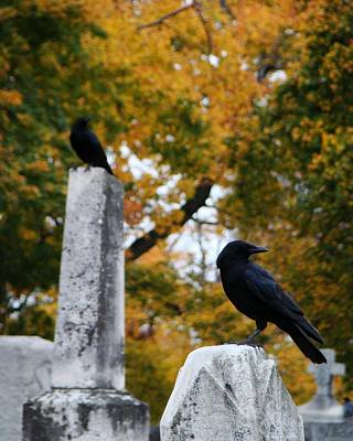 Birds In Graveyard Photograph - Blackbirds Among The Autumn Colors by Gothicrow Images