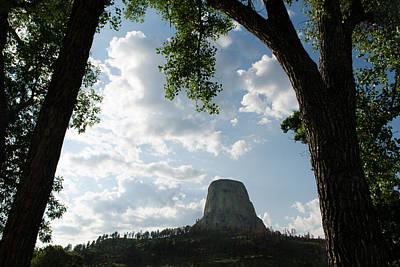 Photograph - Among The Cottonwoods At Devils Tower by Dakota Light Photography By Dakota
