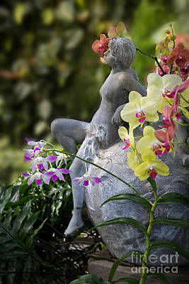 Photograph - Among The Orchids by Jemmy Archer