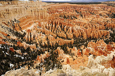 Photograph - Amphitheatre At Bryce Canyon by Larry Ricker