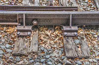 Photograph - Amsco Switch by Dale Powell