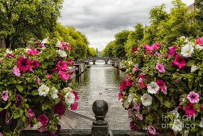 Photograph - Amsterdam In Bloom by Barbara Youngleson