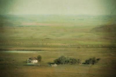 An Abandoned Farmhouse Print by Roberta Murray