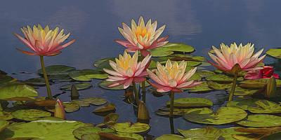 Laura James Photograph - An Abundance Of Waterlilies by Laura James