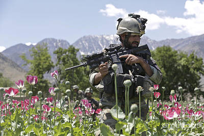 Afghan National Army Photograph - An Afghan National Army Soldier Patrols by Stocktrek Images