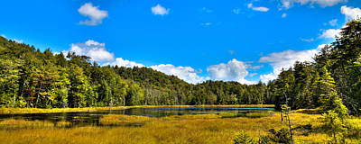 Photograph - An Afternoon At Fly Pond by David Patterson
