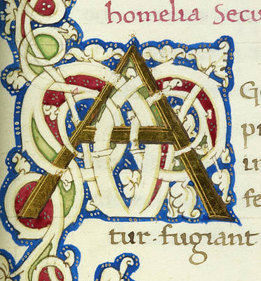 Natura Photograph - An Alphabet Initial Ornamental Letter by British Library