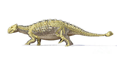 Archaeology Digital Art - An Ankylosaurus Dinosaur With Full by Leonello Calvetti