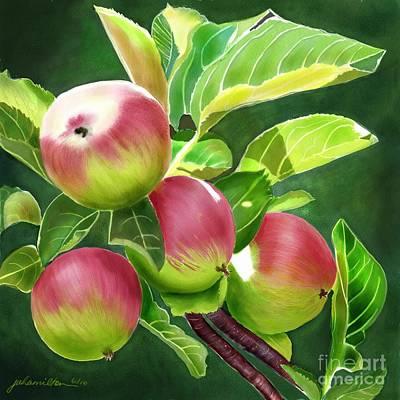 An Apple A Day Art Print by Joan A Hamilton