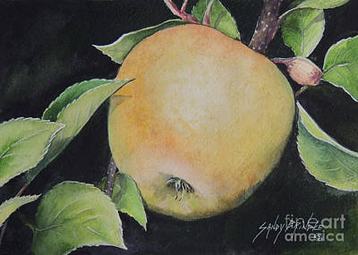 Painting - An Apple A Day...sold  by Sandy Brindle