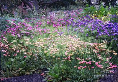 Photograph - An Array Of Flowers by Marcia Lee Jones