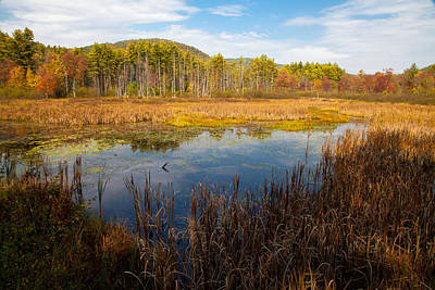 Photograph - An Autumn Afternoon In The Adirondacks by David Patterson