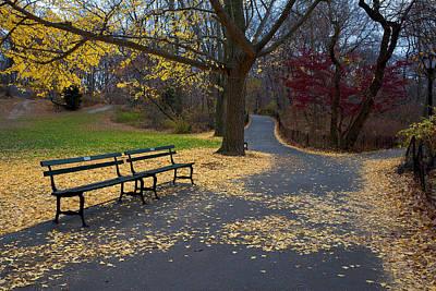 Photograph - An Autumn Bench by Cornelis Verwaal