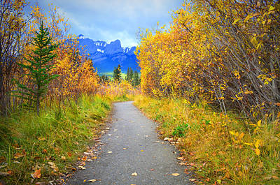 Photograph - An Autumn Day In Canmore by Tara Turner