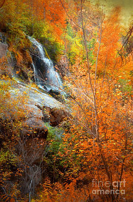Photograph - An Autumn Falls by Tara Turner
