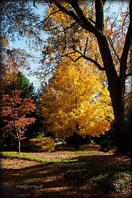 Photograph - An Autumn Holdout - Davidson College by Paulette B Wright