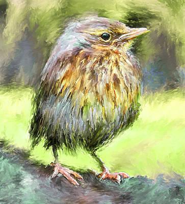 An Early Autumn Bird Art Print