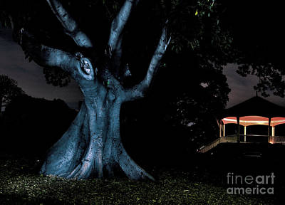 An Eerie Evening Print by Kaye Menner