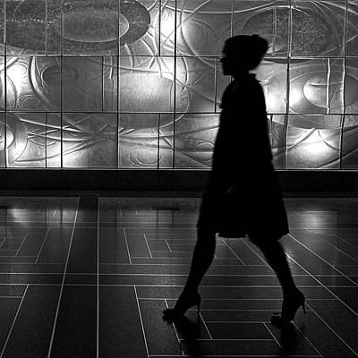 Photograph - An Elegant Silhouette by Cornelis Verwaal