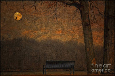 Park Benches Photograph - An Empty Park Bench by Tom York Images