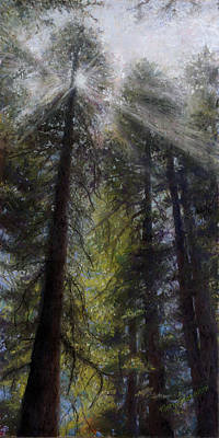 Painting - An Enchanted Forest by Mary Giacomini
