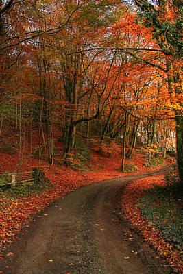Photograph - An English Autumn by Sarah Broadmeadow-Thomas
