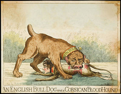 English Bull Dog Drawing - 'an English Bull-dog And A  Corsican by Mary Evans Picture Library