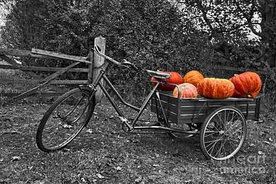 Jacko Photograph - An English Halloween by Nick Wardekker
