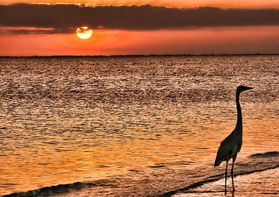 Photograph - An Evening Stroll Along The Beach by Don Schwartz