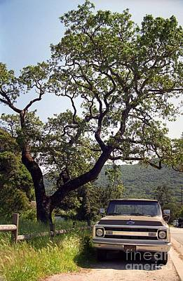 Photograph - An Oak Tree And A Chevy Pickup  by James B Toy