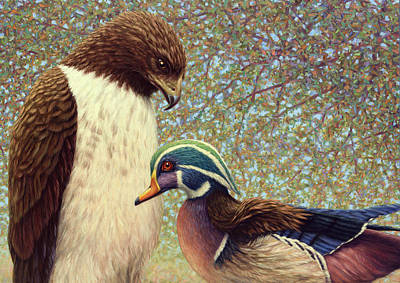 Hawk Painting - An Odd Couple by James W Johnson