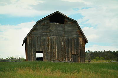 Sultry Plants - An Old Barn by Jeff Swan