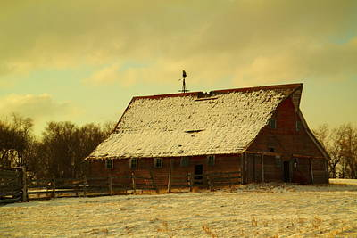 Giuseppe Cristiano - An Old Barn Just After An Early Spring Snow In Keene North Dakota  by Jeff Swan