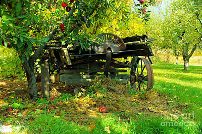 Wagon Wheels Photograph - An Old Harvest Wagon by Jeff Swan