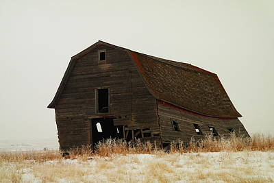 Birds Rights Managed Images - An Old Leaning Barn In North Dakota Royalty-Free Image by Jeff Swan
