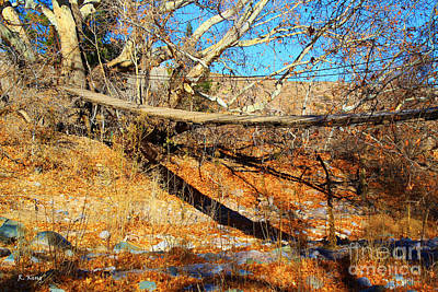 Photograph - An Old Rustic Suspension Bridge by Roena King