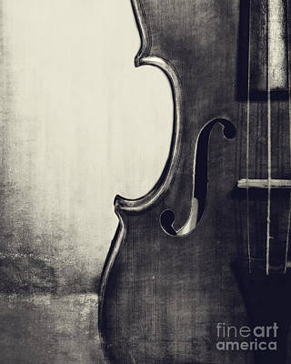 Violins Photograph - An Old Violin In Black And White by Emily Kay